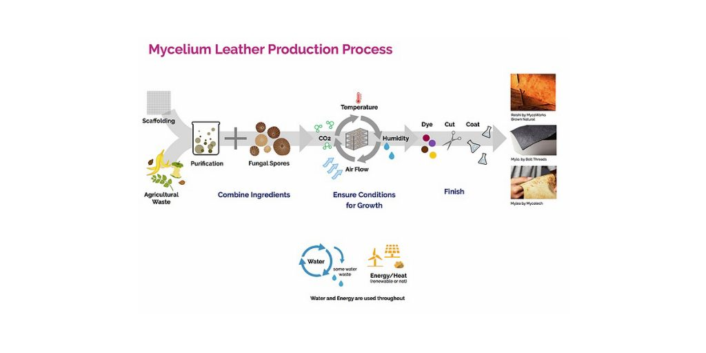 The mycelium leather production process takes one to two weeks, compared to approximately two years for bovine leather production